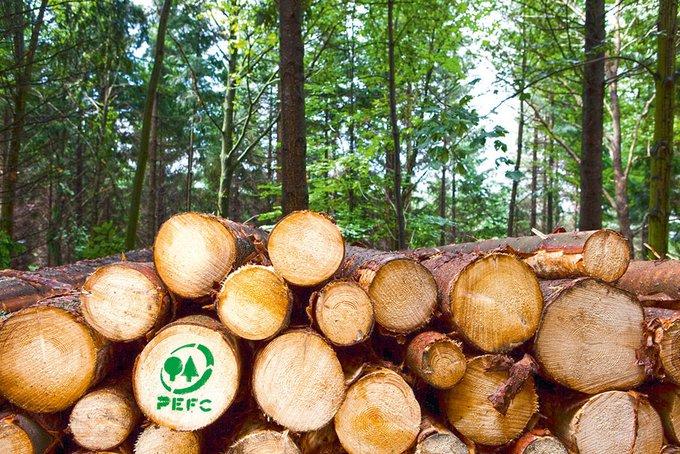 Die Organisation PEFC stellt sicher, dass er nur nachhaltig, also schonend, naturgerecht und sozialverträglich genutzt wird.