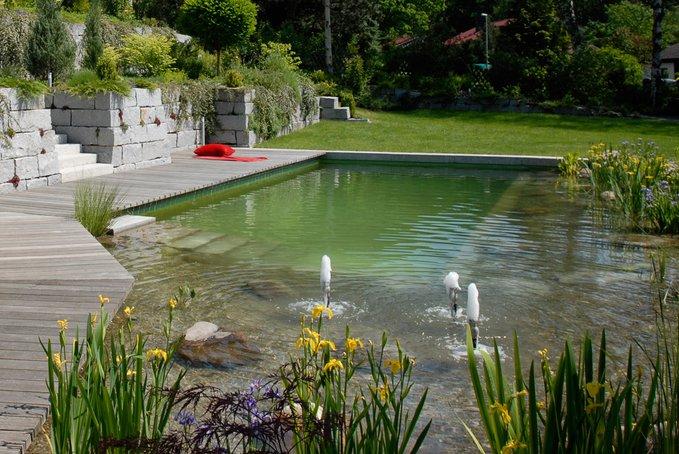 swimming pool - klassisch oder natürlich? | garten & grün, Garten und Bauen