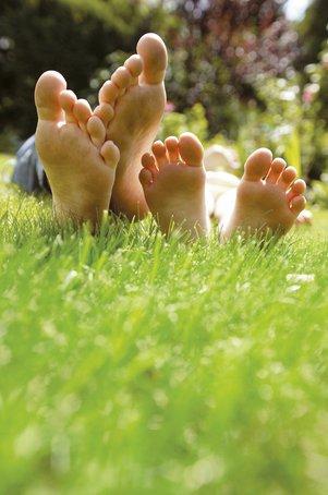 Rasen: Grün, grüner, am schönsten!