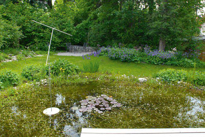 Naturgarten Was Ist Das Eigentlich Zuhause3 De