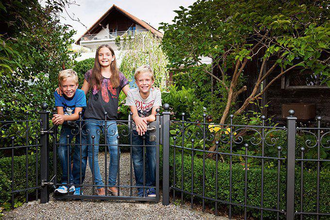 Zaun Mauer Oder Hecke Zuhause3 De