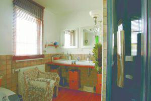 house-1469-platz-fuer-eine-familie-mit-fuenf-kindern-classic-169-von-dan-wood-1