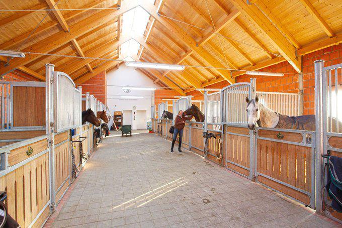 house-2438-drei-bis-vier-stunden-ver-bringt-marlene-weller-taeglich-bei-ihren-acht-pferden-1