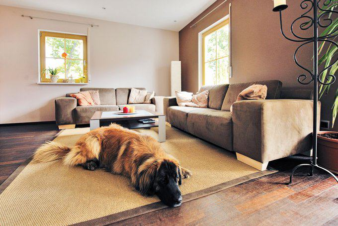 house-709-lux-kundenhaus-der-familie-platsch-im-landhaus-stil-5