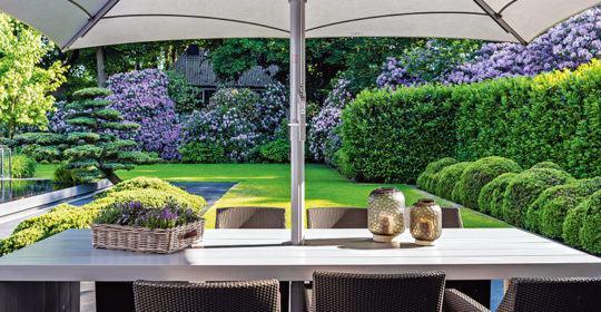 Sichtschutz durch Grünpflanzen