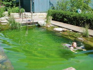 BGL-Schwimmteich