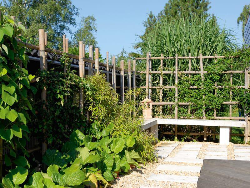 Bambus Sichtschutz Gaertner von Eden