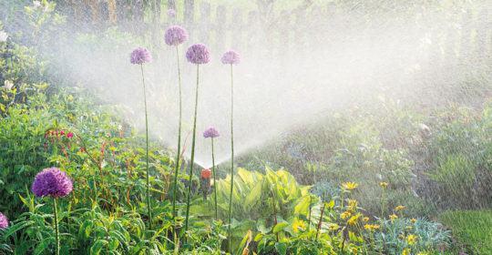 Stockbild Gartenbewässerung